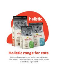 Holistic_Range