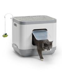 Cat_Concept_2