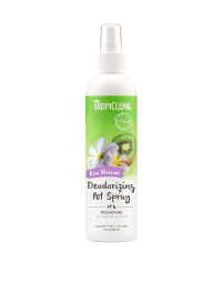 Kiwi Blossom Spray