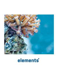 Coral Glue_2