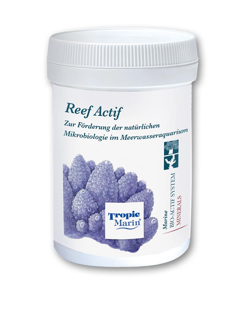 Reef Actif