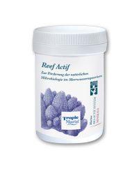 Reef_Actif_2