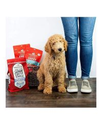 Raw Coated Kibble Puppy_3